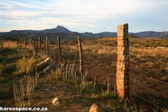 Compassberg in the distance Karoospace provides a Gentle Guide to Karoo Roadtripping South Africa Wildlife, Sa Tourism, Slow Travel, Travel Info, Photo Reference, Route 66, Countries Of The World, The Locals, Gates