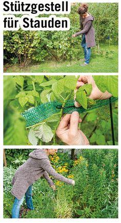 Gib deinen Pflanzen den nötigen Halt! Mit diesem Stützgestell für Stauden und Sträucher kippen die Pflanzen nicht um.