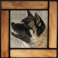 Hey, I found this really awesome Etsy listing at https://www.etsy.com/listing/167662737/akita-dog-portrait-stained-and-fused