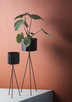The Ferm Living Plant Stand is beautiful way to display your flowers. Buy Ferm Living designs today from Utility. Ferm Living Plant Stand, Black Plant Stand, Plant Stands, Wall Mounted Plant Holder, Color Terracota, Interior Minimalista, Retro Home Decor, Modern Decor, Terracotta
