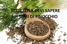 Semi di Finocchio: la ricetta del benessere! Utile per prevenire Il Cancro. Un benessere naturale grazie alle molteplici proprietà! SCOPRI I SUOI BENEFICI!