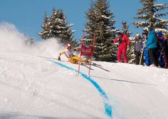 FIS Men's Alpine Skiing World Cup. The FIS Alpine Ski World Cup is the top international circuit of alpine skiing competitions, launched in 1966 by a group of ski racing friends and experts.