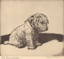 "DIANA THORNE'S Sealyham-Terrier ""THE INCONSOLABLE"" Vintage 1935 Dog Book Print"