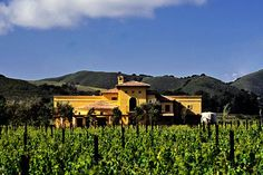 Melville Winery & Vineyards in Lompoc, California. Photo courtesy Kirk Irwin