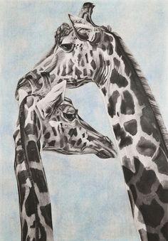 """Saatchi Online Artist Ashleigh Dix; Drawing, """"Giraffe"""" #art"""
