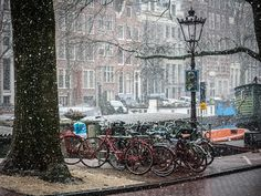 winter-time-in-amsterdam-tino-lopes.jpg (900×675)