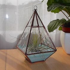 Stained Glass Terrarium, Stained Glass Air Plant Holder, Green Glass Terrarium - MADE TO ORDER