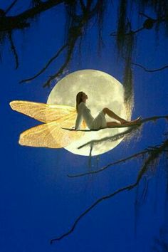 A fairy in the moon
