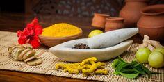 Ayurveda und seine Gewürze. Einführung in die Anwendungen der ayurvedischen Heilkunst