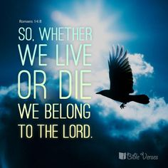 for if we live, we live for the Lord, or if we die, we die for the Lord... Romans 14:8