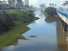 """Pregopontocom Tudo: O RIO JAGUARIBE NÃO NASCEU """"ESGOTO"""""""