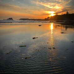 Sunset at Chesterman Beach in Tofino is a great way to end a day #Tofino #pacificocean Mountain Photography, Pacific Ocean, South America, Europe, Sunset, World, Day, Beach, Travel