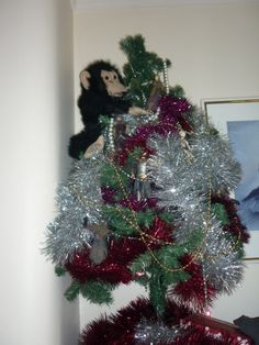 Christmas 2012 - peter jackson themed christmas tree to celebrate the release of the first hobbit movie, featuring lotr action figures and a chimp puppet for king kong