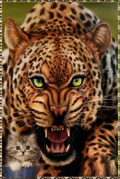 Animated Gif by Kevinjj_Kennedy Beautiful Cats, Animals Beautiful, Jungle Animals, Cute Animals, Big Cats, Cats And Kittens, Animation, Leopard Animal, Live Wallpapers