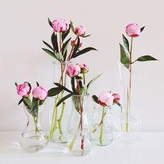 18 Single Flower Arrangements Ideas Flower Arrangements Single Flower Arrangement