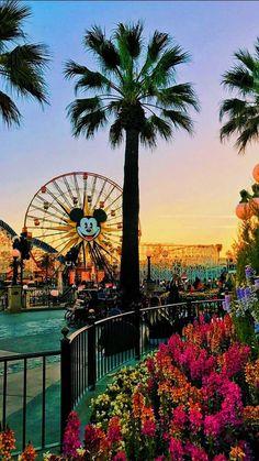Disneyland California 2019 – – ̗̀ tuna the procrastinator ̖́- Disneyland California 2019 – – ̗̀ Thunfisch der Zauderer ̖́- Disney World Fotos, Walt Disney World, Disney Parks, Disney World Pictures, Disney Worlds, Disney California, California California, California Quotes, Look Wallpaper