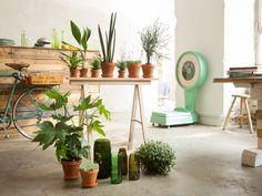 Geen mogelijkheid om planten op tafels te zetten, schuifdeuren