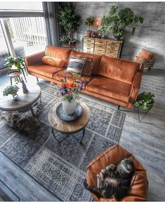 home Cool And Contemporary burnt orange living room furniture made easy Weed Control Facts: Winning Home Living Room, Interior Design Living Room, Living Room Furniture, Living Room Designs, Wooden Furniture, Apartment Living, Outdoor Furniture Sets, Outdoor Decor, Burnt Orange Living Room Decor