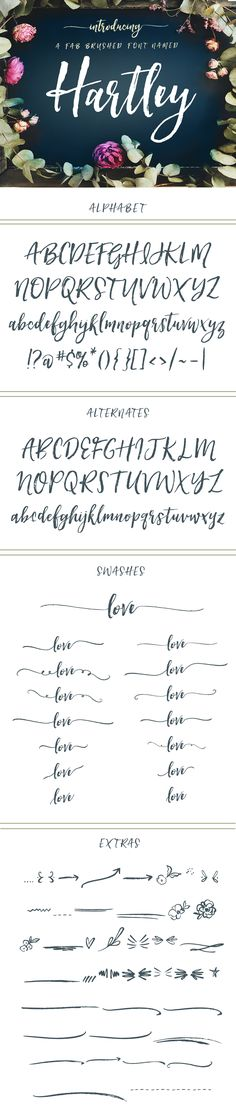 Hartley Modern Brush Lettering Calligraphy Font Meet Hartley, A Hand Brushed Calligraphy Font with a Tattoo Fonts Alphabet, Hand Lettering Fonts, Handwriting Fonts, Calligraphy Fonts, Typography Fonts, Script Fonts, Brush Lettering, Vintage Typography, Brush Script
