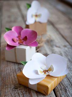 De pasiones y Orquídeas