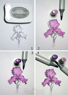 Copic Tutorial- Color a Purple Iris with Copic Markers