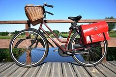 Bicycle, Ladies Bicycle, Cycling