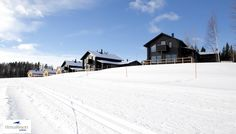 Himos Resort log homes in winter with cross country skiing trails