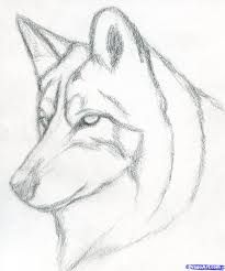 Easy pencil drawings for beginners. how to draw a wolf head, mexican wolf step 3 Easy Pencil Drawings, Pencil Drawings For Beginners, Pencil Drawing Tutorials, Cute Drawings, Drawing Ideas, Simple Drawings, Cool Wolf Drawings, Art Tutorials, Scary Drawings