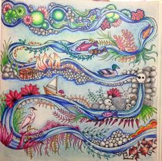 Enchanted Forest Artists Edition 20 Drawings To Color And Frame Amazoncouk Johanna Basford 9781780677859 Books