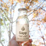We Tried Birch Water the Electrolyte-Packed Superdrink