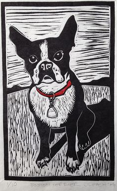 Boston Terrier linocut woodcut linoleum block by SawingLogsGallery | Another nice use of lines. I like how the fur, the grass, and the sky aren't solid colours, so it actually looks like fur and grass.