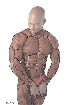 anatomy notes reference에 대한 이미지 검색결과