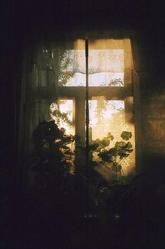 jardin fermé