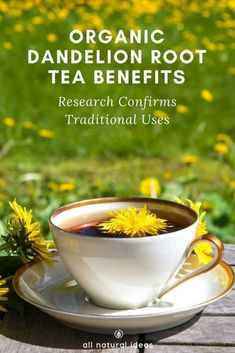 Organic Dandelion Root Tea Benefits: Science Backed? Organic dandelion root tea benefits include everything from improving lactation to killing aggressive cancer cells. It's been used for at least 2000 years. Lemon Benefits, Coconut Health Benefits, Be Natural, Natural Cures, Dandelion Root Tea, Dandelion Benefits, Dandilion Tea Benefits, Dandelion Jelly, Types Of Tea