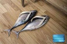 My Crazy Email: Unusual Shoes