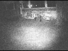 @waverlyhills This is a good example of how fast it moves. When u see one Its hard to be sure. Luckily someone caught it!     Apparition at Waverly Hills..taken by WPPH