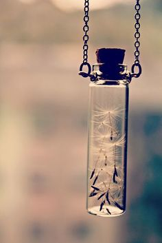 A jar of wishes necklace, for whenever you need to make a wish. I must have it!!