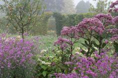 Garden designed by: AnoushkaFeiler