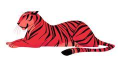 Tiger by Heather Nesheim - Tier Tiger Sketch, Tiger Drawing, Tiger Art, Big Cats Art, Cat Art, Illustration Art Drawing, Illustrations, Photo Illustration, Cat Doodle