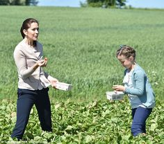 Yum! To finish off their busy day, the sweet duo of Crown Princess Mary and Princess Isabella tucked into some gorgeous, fresh strawberries from a lush paddock, 5 June 2015.