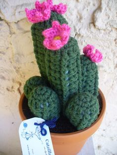 crochet cactus clump with pink flowers
