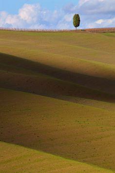 Val d'Orcia; Foto di Tiziano Pieroni; #Siena #Toscana #ValDOrcia