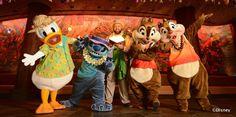 """ディズニーキャラクターと一緒に美味しいディナービュッフェを楽しもう! """"Disney Aulani Resort Character Dinner at Makahiki"""" #hawaii #ハワイ  http://www.poohkohawaii.com/event/aulani_makahiki.html"""