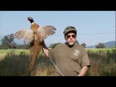 Official Ojai Valley Taxidermy TV Commercial - YouTube
