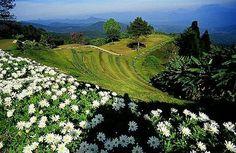 Haui Nam Dang National Park