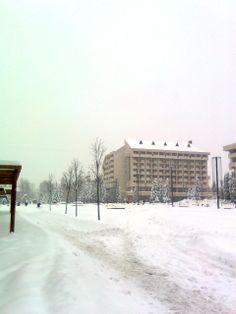 tél Sapi