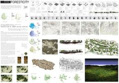 AWR - Architecture Workshop in Rome: ADA 2011 - Architecture Dissertation Award // FORESTICITY - Dimitris Anagnostopoulos, Hui ju Lee, Greece-USA