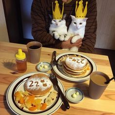 15 Pics Showe A Bout Japanese Couple Captures Every Time Their Cats Watch Them Eat Japanese Couple, Japanese Cat, Japanese Food, Crazy Cat Lady, Crazy Cats, Cat Couple, Son Chat, Cat Watch, Birthday