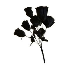 Black Roses Bunch Dead Flowers Silk Like Vampire Monster Bride... ($46) ❤ liked on Polyvore featuring home, home decor, flowers, fillers, accessories, backgrounds and random