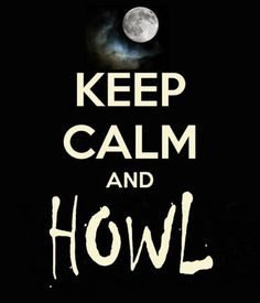 Image result for keep calm i love wolves